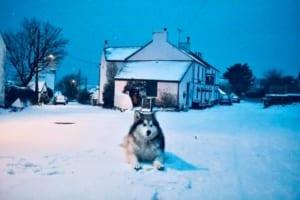 Victoria Inn on a very snowy day!